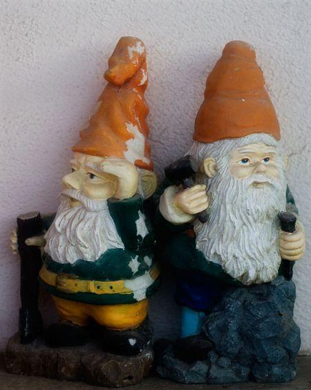 Dis-gnomes